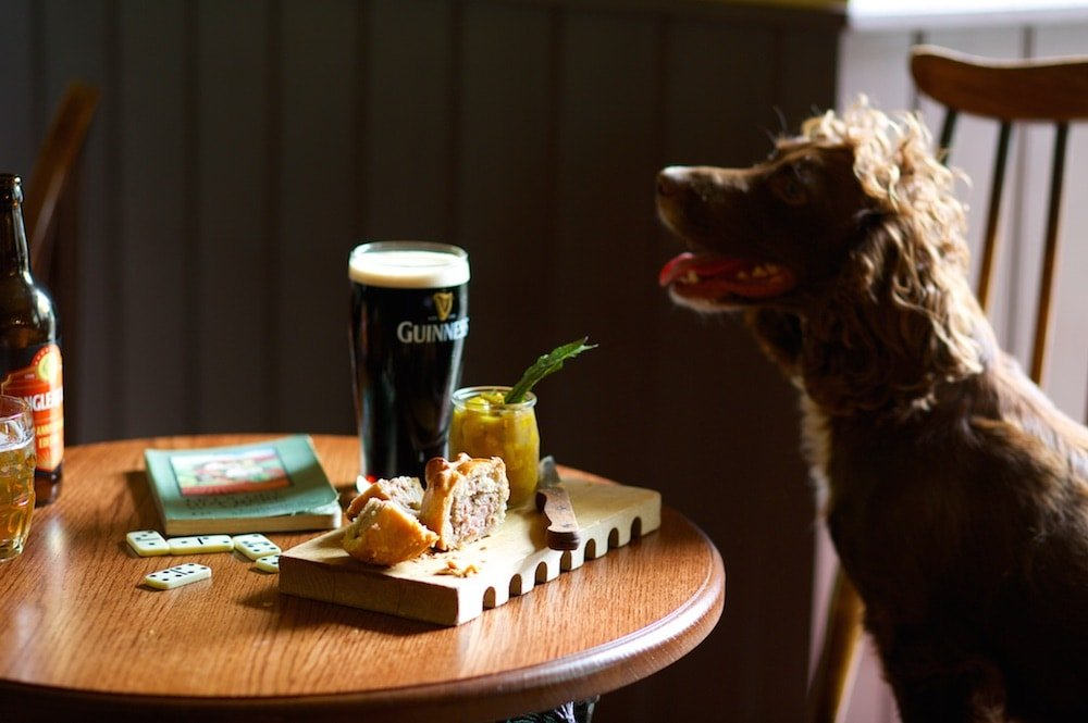 dog sitting at the table with a Guinness at The Bath Arms in Wiltshire