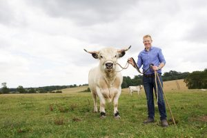Adam Henson with a White Park bull