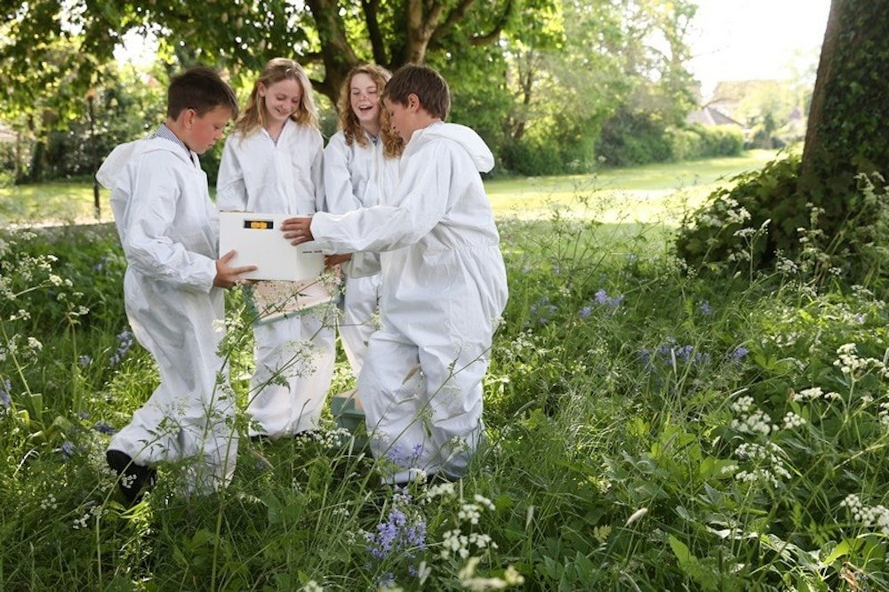 children in white bee-keeping outfits