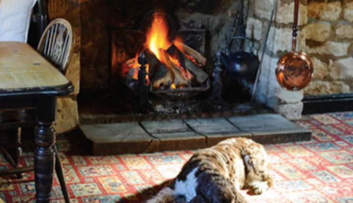 dog fire pub The Weighbridge Inn