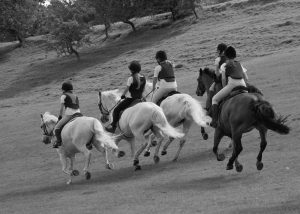children riding white horses